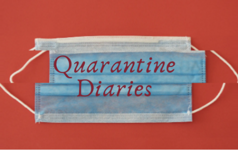 Quarantine Diaries: I admire the dedication of members of our community