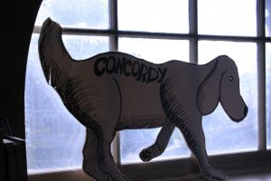 Concordy dog in the Concordy office.