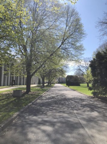 A view of the empty street on campus next to the Nott memorial.